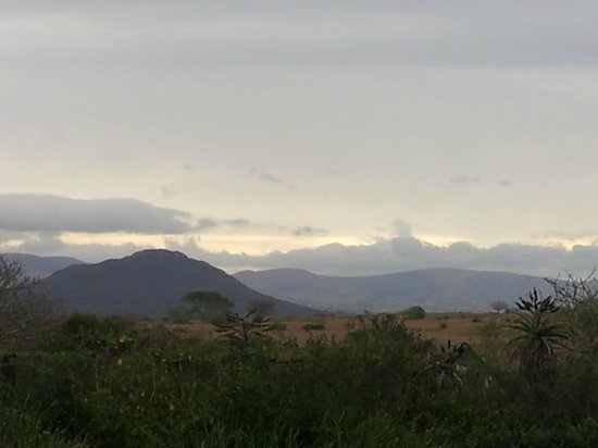 Zulu Nyala Heritage Safari Lodge : Peaceful late afternoon