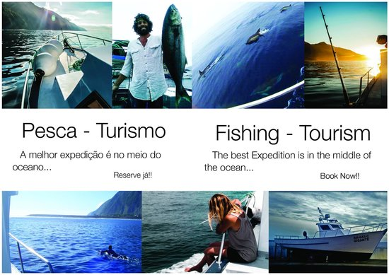 Gigante Expeditions: Fishing, Tourism, Dolphins, Boat Ride, Terceira, Azores, Portugal