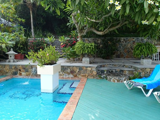 Bellavista Bed & Breakfast: Pool and garden area