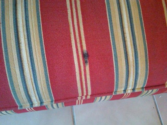 Royal Palm Bay: Another stained blanket on bed