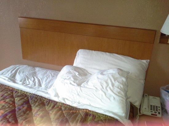 دايز إن تشارلستون إيست: full size beds that are stained up.