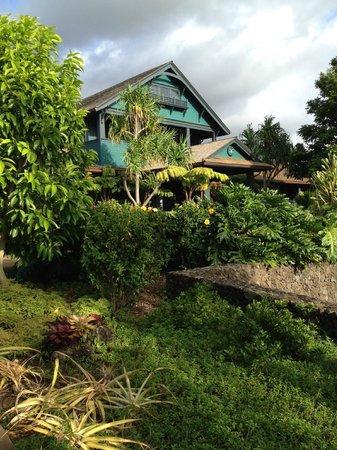 Lumeria Maui Retreat: Lush Lumeria