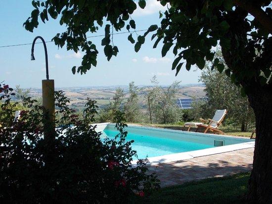 Agriturismo Canapina: piscina
