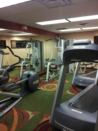 Holiday Inn Express & Suites Tyler South: Workout Room