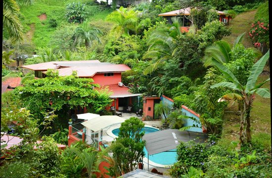 Condotel Las Cascadas: View from the Canopy Villa to the rest of the property