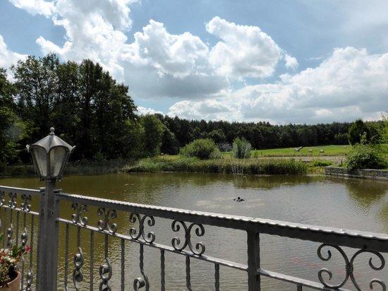 Forsthaus Dröschkau: Biergarten mit Teich