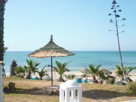 Palm Beach Club Hammamet : vue jardin - mer