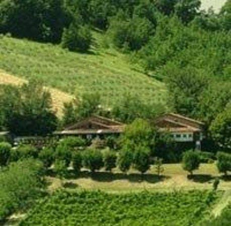 Monteveglio, Italia: a Montebudello Agriturismo AlPazz