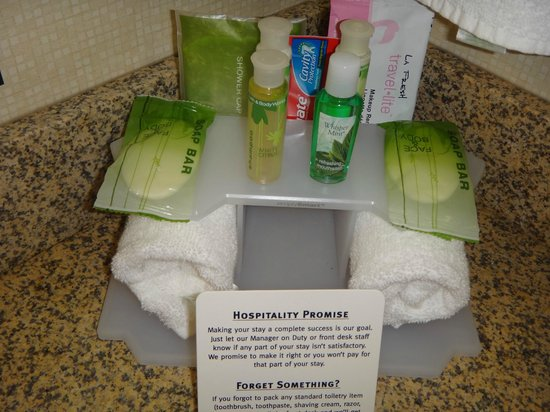 Holiday Inn Express Hotel & Suites Youngstown W - I-80 Niles Area: Great freebies - toothpaste, makeup removing face wipe, Bath and Body Works toiletries