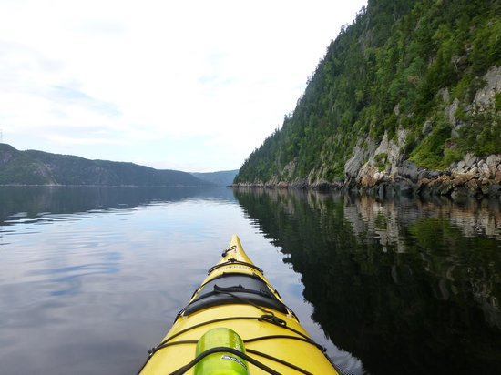 Ferme 5 Étoiles  : En pagayant sur le Fjord