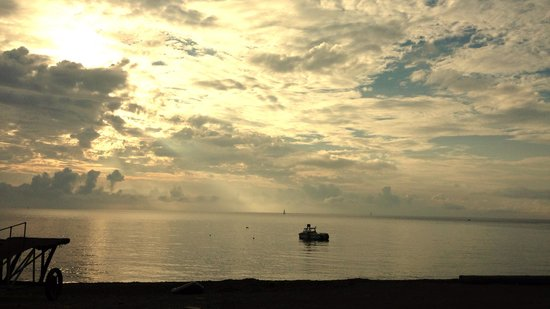 Porthkerris Divers: Looking out from our pitch early morning