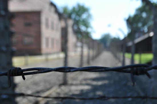 SeeKrakow Day Tours: Auschwitz I