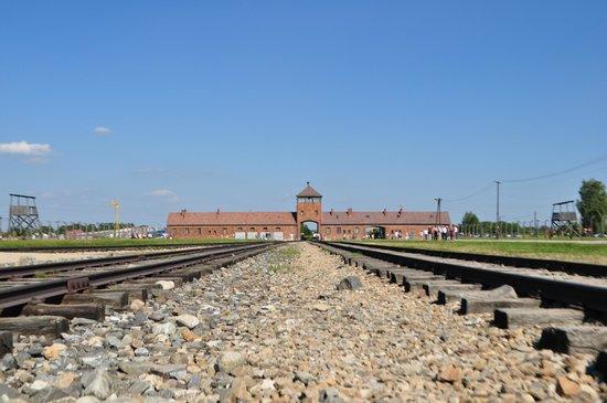 SeeKrakow Day Tours: Auschwitz II (Birkenau)