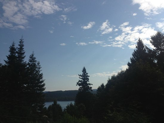 Anchor Point: View from the patio: forest & water