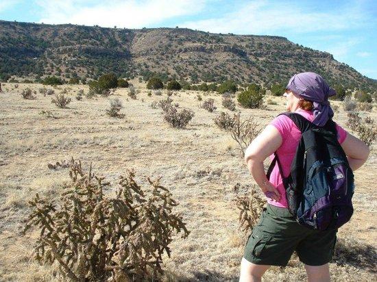 Black Mesa Bed & Breakfast: Approach to Black Mesa