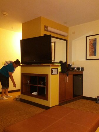 Hyatt Place Milwaukee Airport : TV, small fridge and coffee area