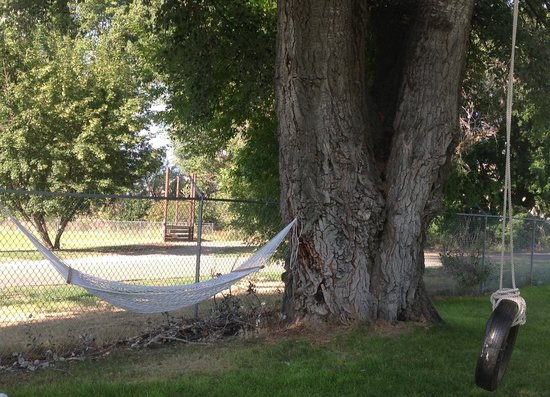 Albion, Айдахо: Hammock and Tire Swing Under Large Shade Tree