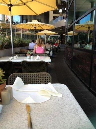 True Food Kitchen : on the deck