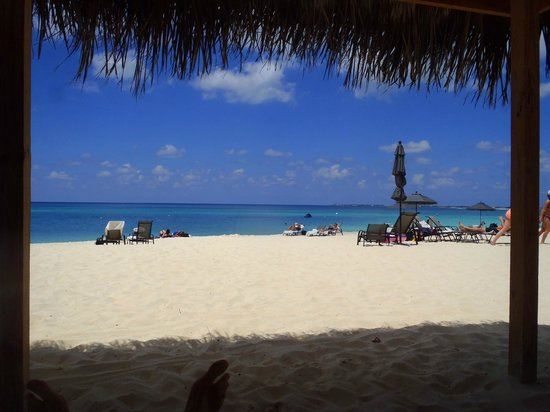 Beachcomber Grand Cayman: Snapshot from under the beach hut