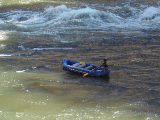 Zambezi Rafting Day Tours : Douggie