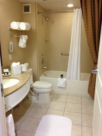 The Wilshire Grand Hotel: bathroom