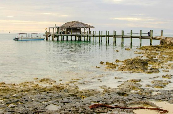 Small Hope Bay Lodge : The dock.  Snorkeling/Diving gear available for use.