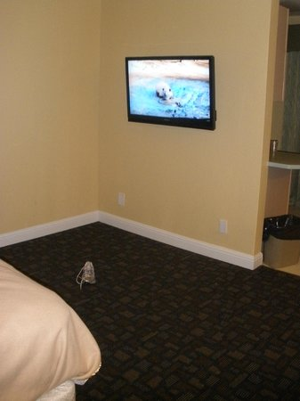 Marinwood Inn & Suites: odd large empty space between bed and flat screen tv