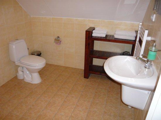 Pension Vodotrysk: bathroom