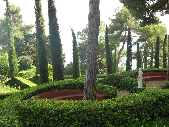 Jardin Santa Clotilde : Красота!!!