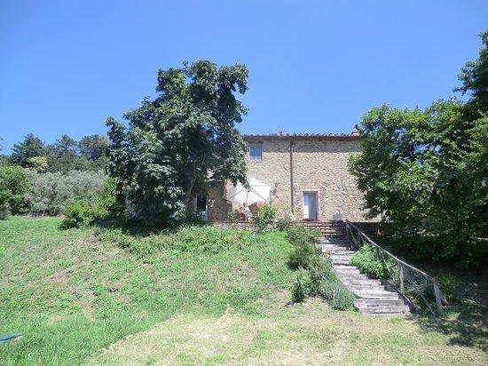 The house & terrace.