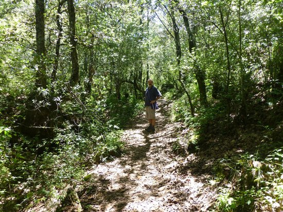 Moxviquil: The walking trails