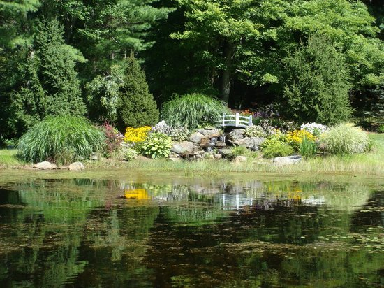 Rosewood Country Inn: Pond & Flowers