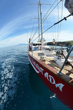 Scuba Galapagos: Encantada