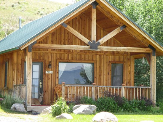 Prier, MT : Cabin 701 with deer on front porch