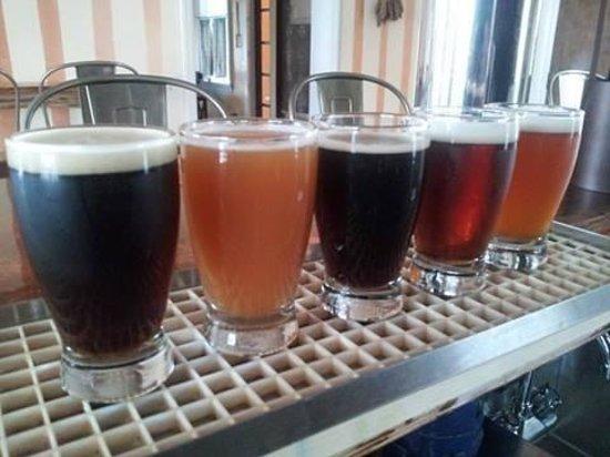 Zuckfoltzfus Brewing Co: yummy beers!