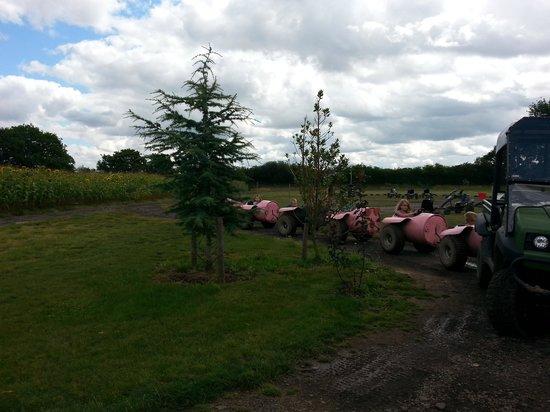 Piglets Adventure Farm: barrel ride