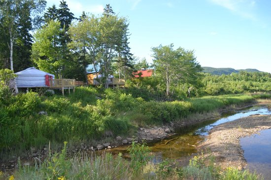 Cabot Shores Wilderness Resort: Walking on the lovely property...view of our yurt!