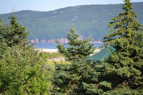 Cabot Shores Wilderness Resort: From the yurt!