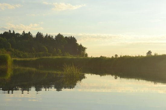 Cabot Shores Wilderness Resort: from our kayak ride around the property