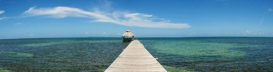 Caribbean Villas Hotel: 300 foot pier gets you closer to the reef and the endless horizon!