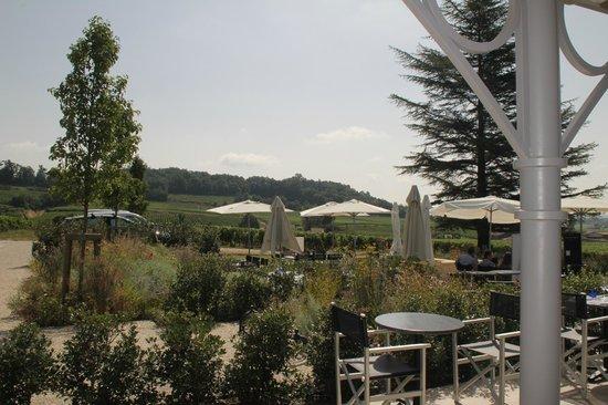 L'Atelier de Candale: la terrasse avec vue sur les vignes