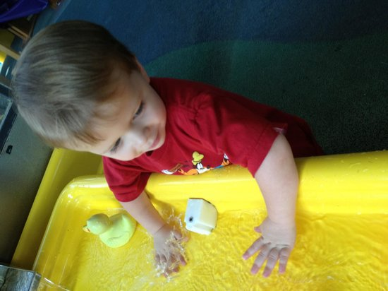 Science Central: Water table fun