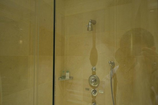 Four Seasons Hotel George V: Shower Stall with old fittings