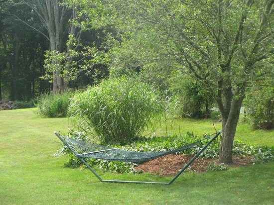 Woods Hole Passage Bed & Breakfast Inn : Perfect place to hang around!