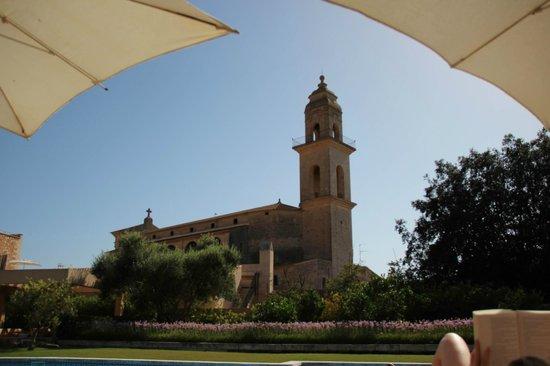 Hotel Ca'n Bonico: Garden