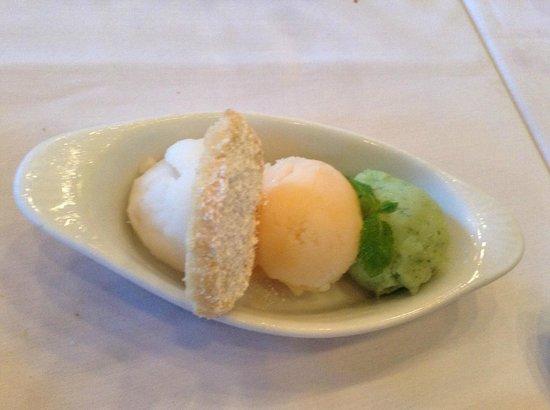 Tierra Sur: sorbet: lavender lemon, cantaloupe, & cucumber mint; flaky almond cookie