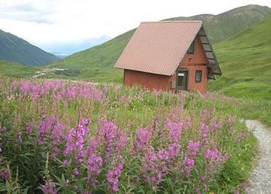 Hatcher Pass Lodge: Cabin