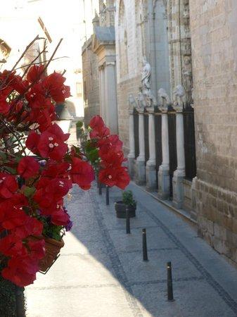 Hostal Casa de Cisneros: hermosa Santa Rita