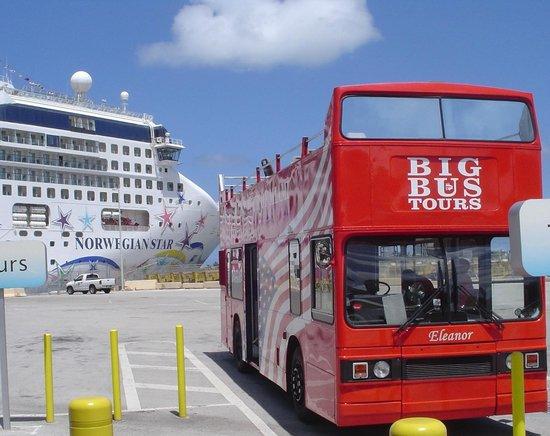 Gray Line Miami Hop on Hop off Bus : Touring Miami on the HOHO Bus