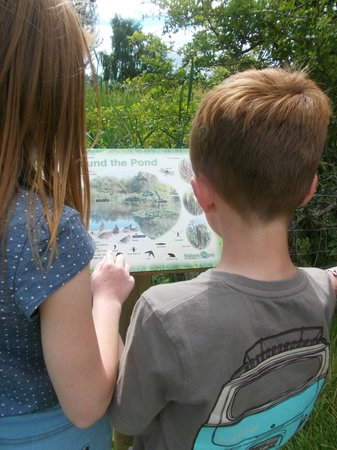 Plassey Holiday Park: The nature walk